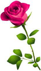 rose clip art.jpg